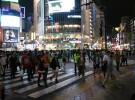 PADEA Japon